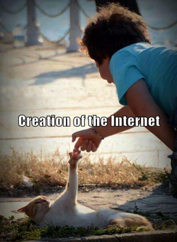 creation111401